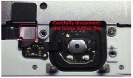 iPhone 6 home button image